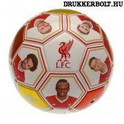"""Liverpool FC """"Photo"""" labda - normál (5-ös méretű) Liverpool focilabda a csapat tagjainak képeivel"""