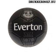"""Everton labda """"Signature"""" - normál (5-ös méretű) Everton címeres focilabda a csapat tagjainak aláírásával"""