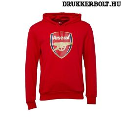 Puma Arsenal kapucnis pulcsi - AFC hoody